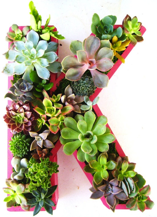 letra plantas