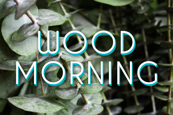 Wood Morning 600