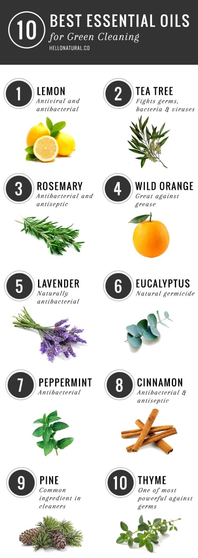 10-best-essential-oils-feb.jpg